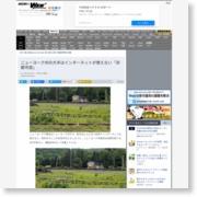 ニューヨーク州の大半はインターネットが使えない「非都市部」 – ASCII.jp