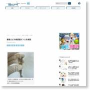養殖エビの病原菌ゲノムを解読 – マイナビニュース