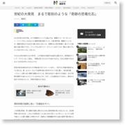 世紀の大発見 まるで彫刻のような「奇跡の恐竜化石」 – 日本経済新聞
