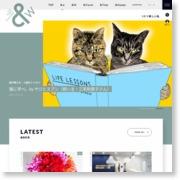 """剛力彩芽""""アラレちゃん""""に変身 – 朝日新聞"""