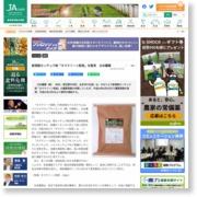新規殺センチュウ剤「ネマクリーン粒剤」を販売 日本農薬 – 農業協同組合新聞