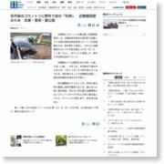 京丹後のコウノトリに野外で初の「托卵」 近親婚回避のため 兵庫・豊岡・郷公園 – 産経ニュース
