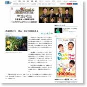 西条柿色づく 岡山・津山で収穫始まる – 産経ニュース