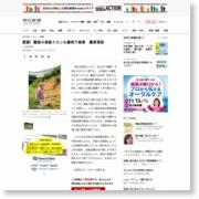 愛媛)離島の高級ミカンも豪雨で被害 農家落胆 – 朝日新聞社