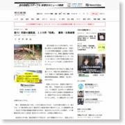 香川)四国の遍路道、12カ所「危険」 豪雨・台風被害 – 朝日新聞社