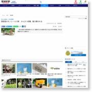興居島のモノレール寸断 かんきつ収穫、動力奪われる – 愛媛新聞