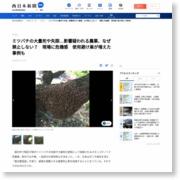 農薬はミツバチの天敵か 大分の農家 神鳥一さん 使用避けて一転、巣が増えた ネオニコチノイド系 欧州では一部禁止へ – 西日本新聞