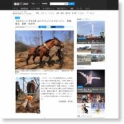 【はたらくいきもの】山にやさしい エコエンジン 馬搬、復活 長野・松本市 – 産経ニュース