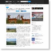 中国、工事強行 ケニア国立公園に鉄道建設 自然保護団体「政府は中国 … – 産経ニュース
