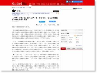 【ハザードマップ】ビバック/&・BLUE もろい財務基盤で特定企業に傾注 – SankeiBiz